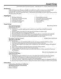 Operations Manager Resume Samples Sample Professional Letter Formats