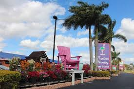 Flamingo Road Front Sign And Chair  Greenhouse Grower
