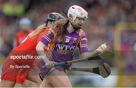 Cork v Wexford - Irish Daily Star National Camogie ... - Sportsfile