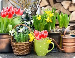 VA1sledek obrA!zku pro jaro