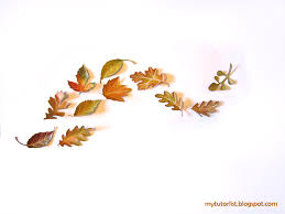 19 leaf wall decor charlton home desford leaf wall dcor reviews wayfair mcnettimages  on stratton home decor blowing leaves metal wall art with 19 leaf wall decor charlton home desford leaf wall dcor reviews