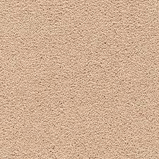 tan carpet floor. Awaited Bliss Homespun 523 Tan Carpet Floor