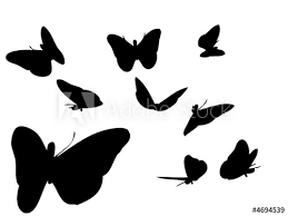 Butterfly Shapes Buy This Stock Vector And Explore Similar