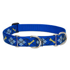 Patterned Dog Collars Custom Patterned Combo Dog Collar From Lupine