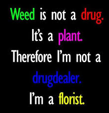 Quotes About Drugs Extraordinary Drugs Quotes And Sayings Images Pictures CoolNSmart