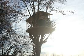 Tree House Photos Building An Amazing Treehouse Youtube