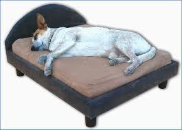 luxury dog bed furniture. Dog Bed Furniture Fresh Dogbeds Outdoor Luxury Dog Bed Furniture O