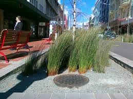 Small Picture Stormwater Water Sensitive Urban Design guide Wellington City