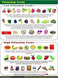 Diet Chart For Diabetic And Kidney Patient Best Kidney Cleanse Dialysis Diet Renal Diet Kidney