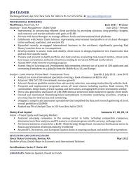 Telecom Analyst Sample Resume Inspiration Gallery Of Professional Billing Analyst Templates To Showcase Your