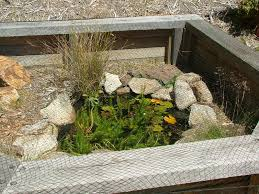 outdoor turtle cage pond detail