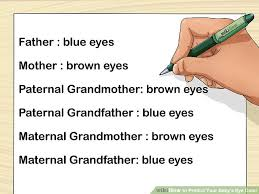 Baby Eye Chart Calculator How To Predict Your Babys Eye Color 12 Steps With Pictures