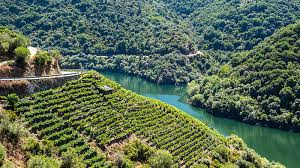 Galicia Climate Chart The Definitive Guide To Wines From Galicia Spain Vinepair