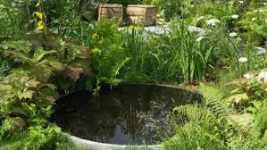 it is worth adding that there is increasing interest in what are sometimes called natural ponds which are designed to function quite happily without the