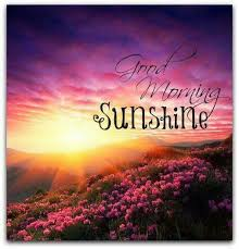 Good Morning Sunshine Quotes Best of Good Morning Sunshine Beautiful Quote Pictures Photos And Images
