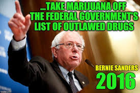 Bernie Sanders Quotes New Best Bernie Sanders Quotes About Marijuana Legalization