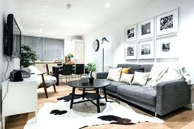 small apartment rugs open concept apartment decorating ideas decorating ideas for small apartments with cowhide area
