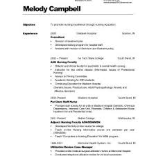 Sample Professional Resume For It Professional Fresh Download It