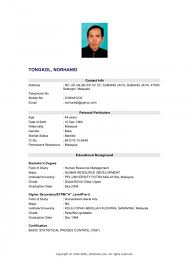 Cv Example My Resume Dreaded Templates Perfect Now Builder Put On