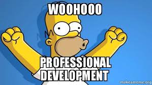 Image result for professional development meme
