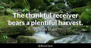 Quotes About Thanksgiving Impressive Thanksgiving Quotes BrainyQuote