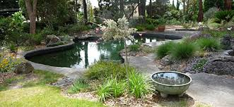 Small Picture Australian Native Plants Society Australia Garden Design Study