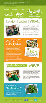 best images about wolf pack newsletter templates 33 simple but effective email newsletter designs love the color and simple vertical layout