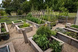 raised garden beds modbox