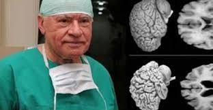 Résultats de recherche d'images pour «image cerveau femme neurologue»