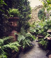 Courtyard Plants Design Ask The Expert Design Tips For A Shady Courtyard Garden