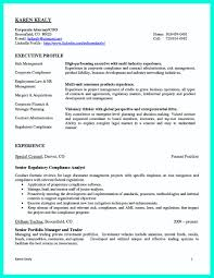 Hippa Compliance Officer Sample Resume Hippa Compliance Officer Sample Resume Shalomhouseus 11