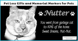 cat memorial stones archives raising
