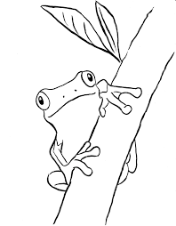 Small Picture Tree Frog Coloring Pages Printable