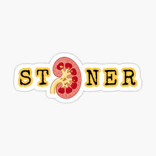 Multiple large smooth kidney stones removed percutaneously from a single kidney. Kidney Stones Stickers Redbubble
