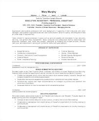 Examples Of Executive Assistant Resumes Sample Resume Personal