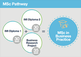 diploma in technology leadership pathway options
