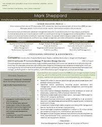 Executive Resume. Executive Resume  Entrepreneur