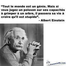 images about citations tes einstein and stencils