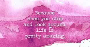 Amazing Quotes To Live By Extraordinary Because When You Stop And Look Around Life Is Pretty Amazing