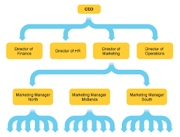 12 13 Organizational Structure Of A Company Lasweetvida Com