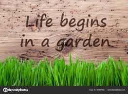 Fond En Bois Clair Gras Citation Vie Commence Dans Un Jardin