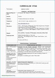 Resume Format For Lawyers Professional College Student Resume