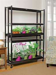 growing orchids indoors high intensity grow lights with 2 tiers
