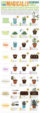 Kitchen Gardeners 17 Best Ideas About Biodynamic Gardening On Pinterest