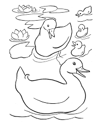 Small Picture Free printable duck coloring pages for kids coloring duck ducks