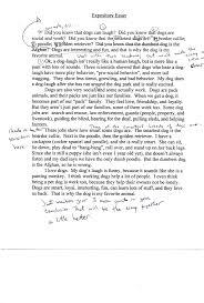 Poem Explication Essay Example Death In Literature Essay