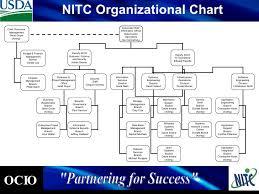 Ocio Org Chart