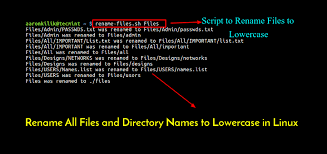 Rename All Files and Directory Names to Lowercase in Linux