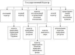 Реферат Усовершенствование техники ведения государственного  Государственные кадастры Украины