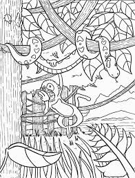 Rainforest Monkey Coloring Page Coloring Page For Kids For Jungle
